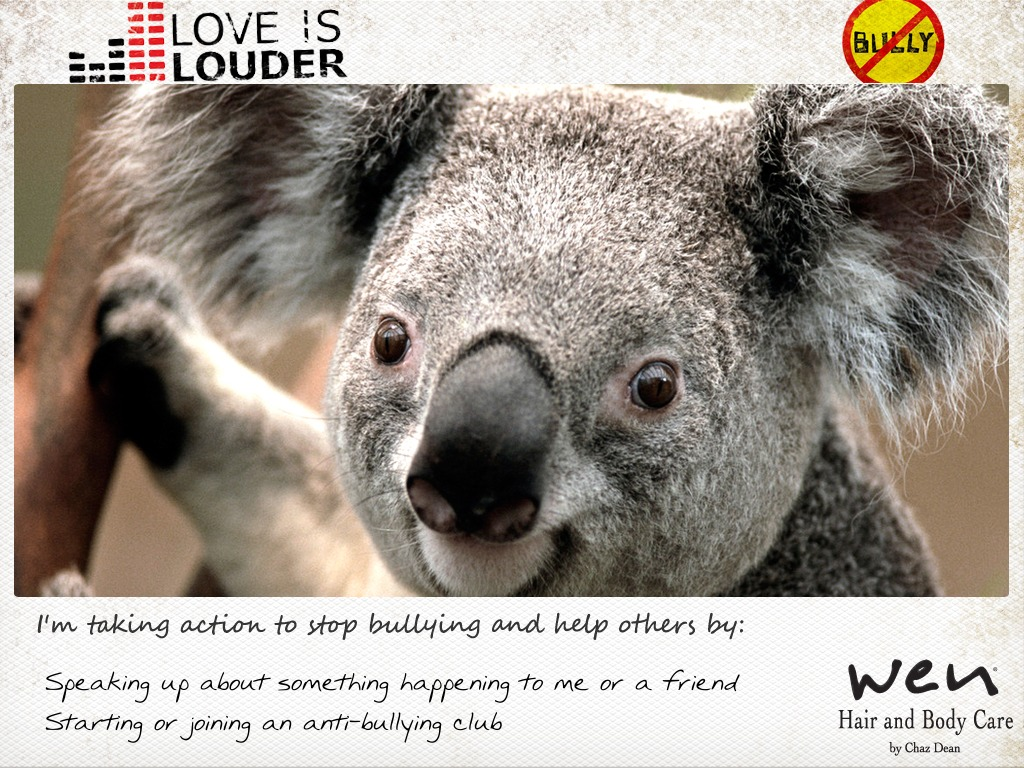 Postcard_koala